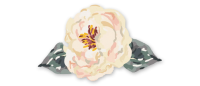 featured_floral_trans2