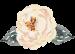 floral designer near me
